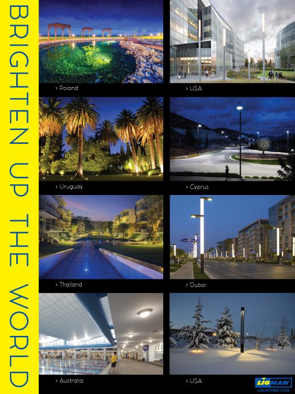World Projects February 6th Ligman Lighting Usa